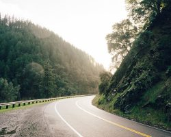 road-curve-bend-ray-of-sunshine